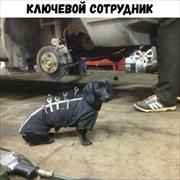 Ремонт рулевой Ауди, Михаил, 39 лет