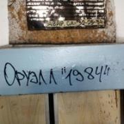 Ремонт кухонной техники в Владивостоке, Роман, 29 лет