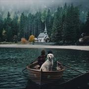 Доставка корма для собак - Коптево, Игорь, 33 года