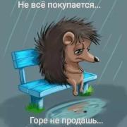 Цены на клининговые услуги в Нижнем Новгороде, Ольга, 35 лет