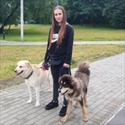 Стрижка кошек, Милена, 20 лет