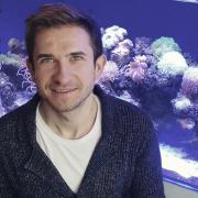 Чистка аквариума с вызовом на дом, Дмитрий, 34 года
