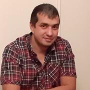 Перевозка животных в Ижевске, Марат, 36 лет