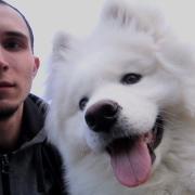 Установка телевизора в Самаре, Сергей, 29 лет