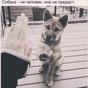 Ремонт бассейнов под ключ в Астрахани, Александр, 23 года