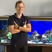 Чистка аквариума с вызовом на дом, Александр, 29 лет