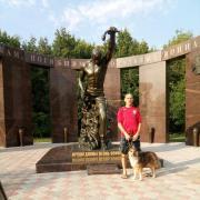 Цена за работу по установке душевой кабины в Саратове, Алексей, 44 года