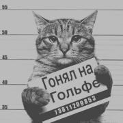Ремонт офисов, Максим, 28 лет