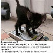 Шлифовка сруба в Челябинске, Владимир, 49 лет