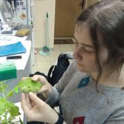 Подготовка к ЕГЭ по биологии, Полина, 20 лет